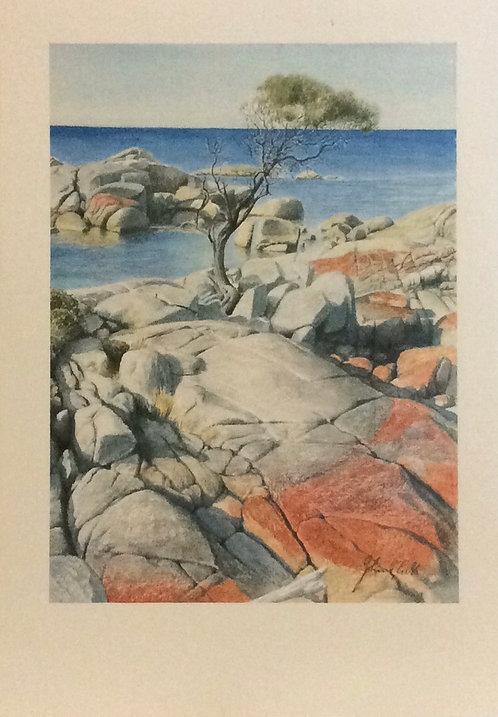 John E Gibb, At Binalong Bay, Tasmania