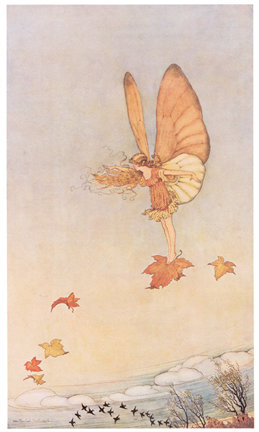 Ida Rentoul Outhwaite, The Voyager, Elves and Fairies in the Australian Bush
