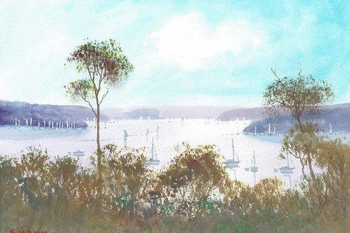 Stephen Mann,  Late Afternoon Pittwater, Sydney