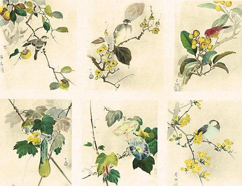 Japonais d'Art Decoratif Pochoir Plate 5