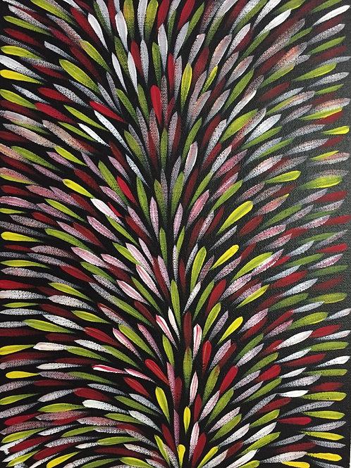 Louise Numina - Aboriginal artwork