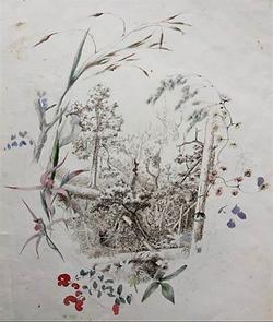 Emma Minnie Boyd, Sketch.PNG