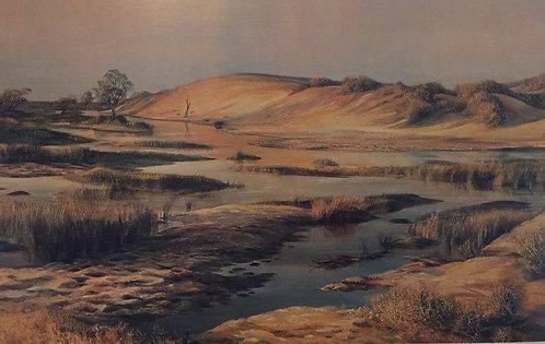 Kenneth Jack, Morning Light, Mungerannie Waterhole