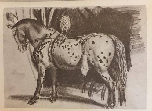 Laura Knight, Circus Horse V