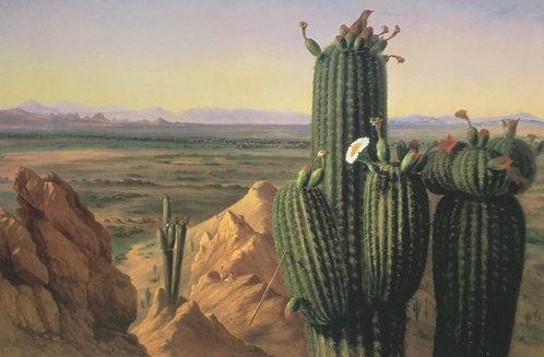 Henry Cheever Pratt, View from Maricopa Mountain near the Rio Gila (detail)