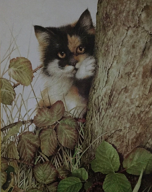 Jan Huston, Tree Kitten