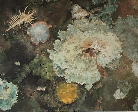 Cressida Campbell, Lichen (detail)