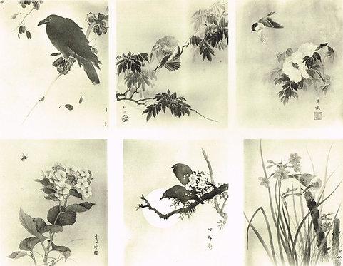 Japonais d'Art Decoratif  Plate 28