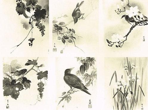 Japonais d'Art Decoratif  Plate 19