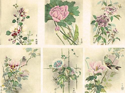 Japonais d'Art Decoratif Pochoir Plate 7
