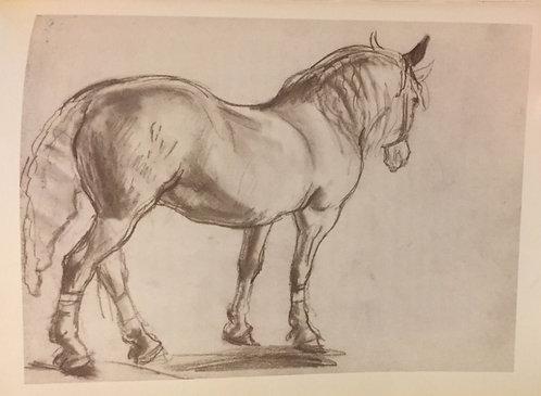 Laura Knight, Circus Horse VII