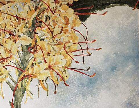 Cressida Campbell, Ginger Flower (detail)