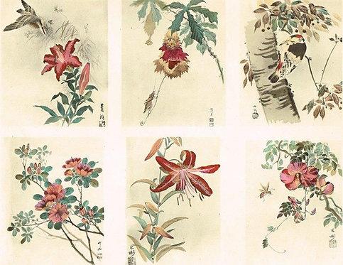 Japonais d'Art Decoratif Pochoir Plate 3