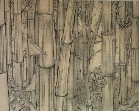 Cressida Campbell, Bamboo (detail)