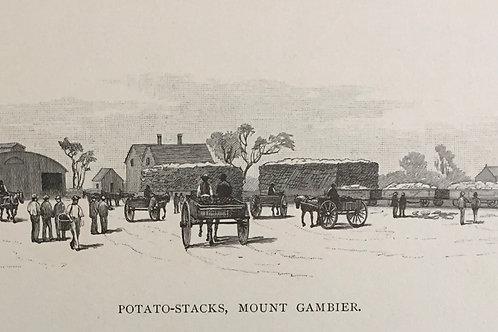 Potato-stacks Mount Gambier