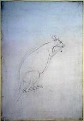Sydney Parkinson, Kangaroo, 1770
