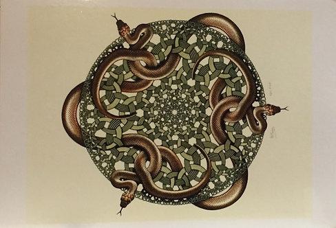 M C Escher, Snakes, 1969