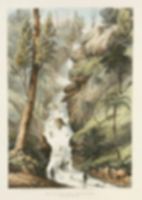 Robert Marsh Westacott, The Bourke Falls