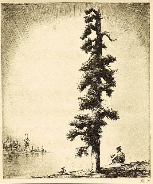 Levon West, Pine and Sapling