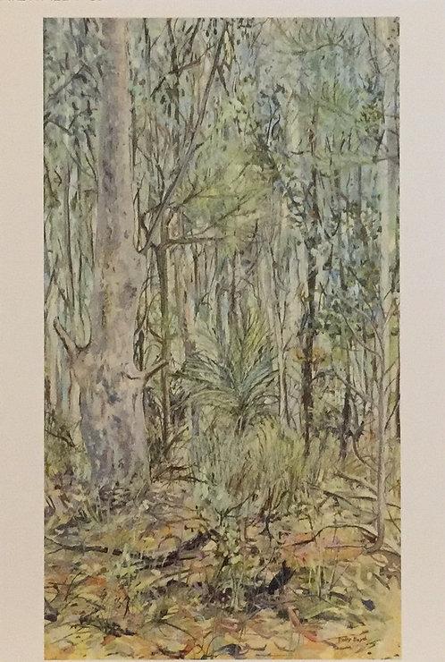 Polly Boyd, Riversdale Bush