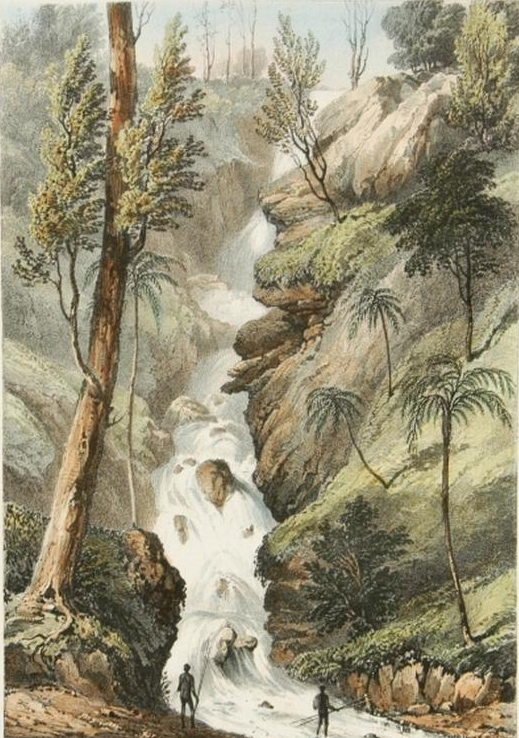 Robert Marsh Westacott, The Bourke Falls, Illawarra, New South Wales. from a Drawing by Capt. Westmacott, lithograph