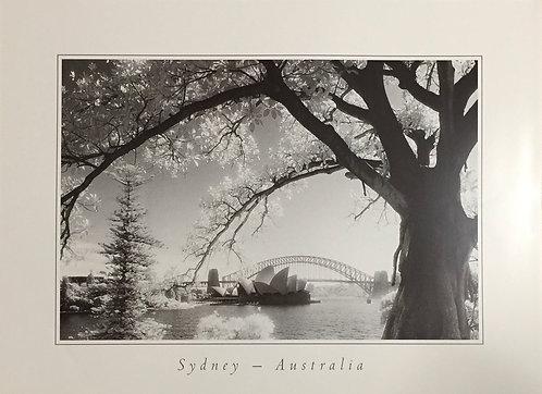 Jonathon Marks, Sydney in Australia