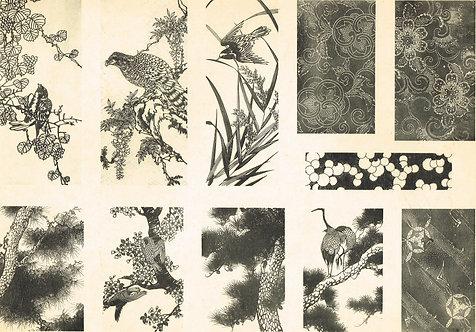 Japonais d'Art Decoratif  Plate 24
