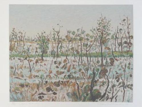 Clem Millward, Screen Print,'Lean Scrub ', 39/95