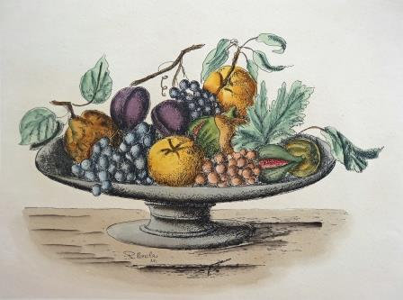 Italian hand coloured print - Still Life