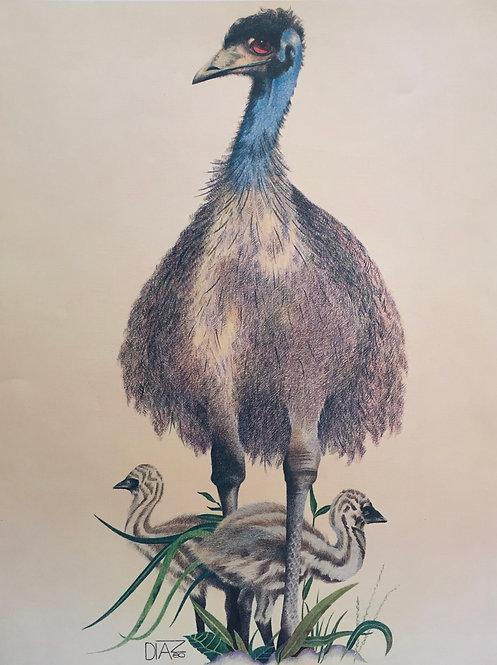 Diaz, Emu