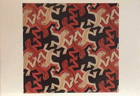M C Escher, Lizard, November 1962