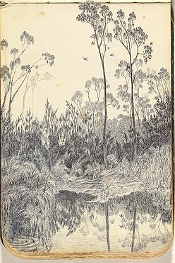Emma Minnie Boyd Bushland with Pond, dra
