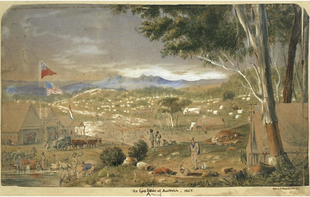 Edward Roper, The Goldfields of Australi