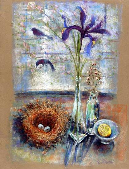Iris and Bird Nest - איריס וקן
