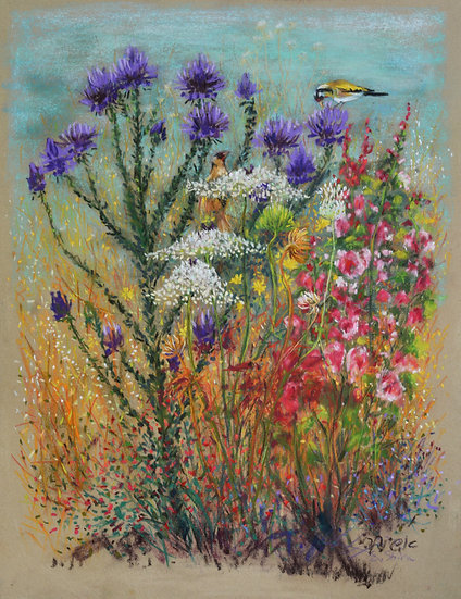 Goldfinches and thistle - חוחיות וקוצים