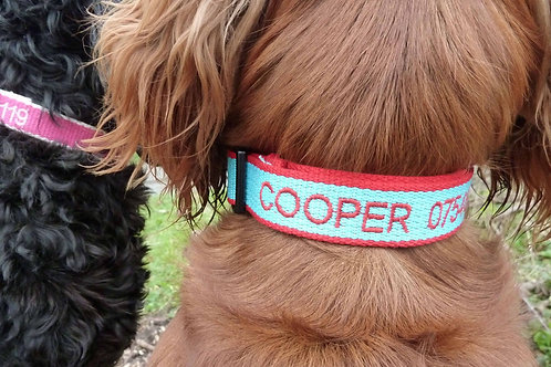 Personalised Eco Friendly Bamboo Collar Sky Blue