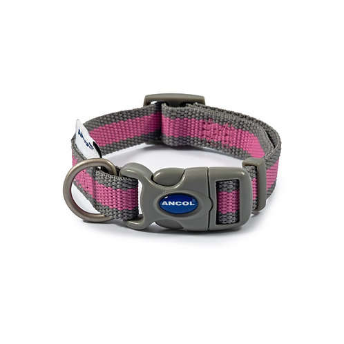 100% recycled webbing Collars Plain / Personalised