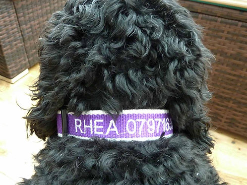 Personalised Eco Friendly Bamboo Collar Purple