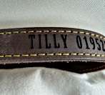 pet collars with names