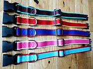 Personalised embroidered pet collar