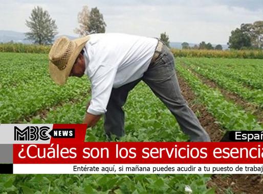 ¿Cuáles son los servicios esenciales y cuáles no?