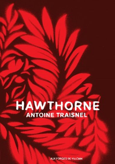 hawthorne cover.jpg