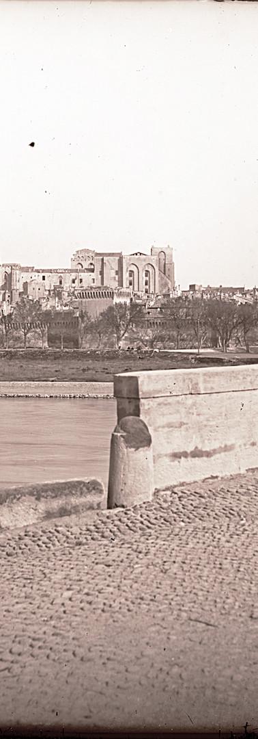 Vue du pont suspendu et de la ville depuis l'île de la Barthelasse
