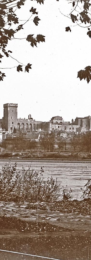 Vue de la ville depuis l'île de la Barthelasse