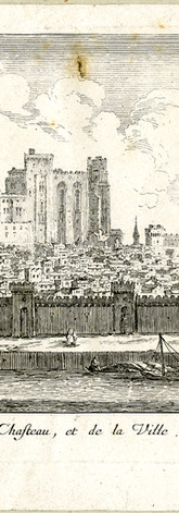 Vue générale de la ville depuis l'île de la Barthelasse