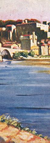 Vue sur le pont Saint-Bénezet et le Palais des papes depuis l'île de la Barthelasse