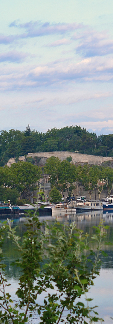 Vue du palais, de la cathédrale métropolitaine, du Rocher des Doms et des péniches depuis la route touristique du bord du Rhône au matin