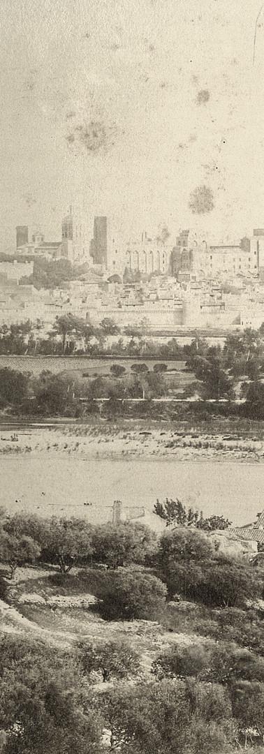 Vue générale d'Avignon et de l'île de la Barthelasse depuis les pentes de Villeneuve-lès-Avignon