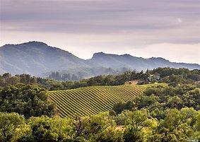 Cloverdale Hills.jpg