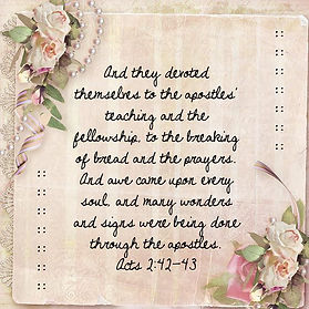 apostles teaching picture for stewardship.jpg